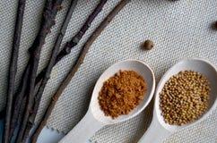 Skedar med kryddor Arkivfoto