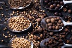 Skedar och kryddor Royaltyfria Foton