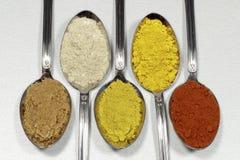 Skedar som innehåller flera typer av kryddapulver arkivfoton