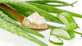Skeden av aloe vera stelnar snittet i kub Fotografering för Bildbyråer