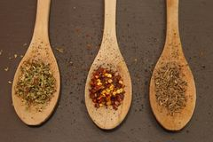 Skeden och spicies kritiserar på maträtten royaltyfri bild