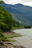 Skeena河海岸线在不列颠哥伦比亚省,加拿大 免版税图库摄影