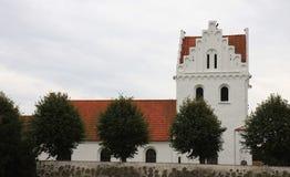 Skegrie kyrka i den sydliga Sverige Arkivbild