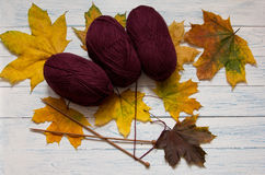 Skeins of yarn, yellow leaves, knitting needles on white desk. Skeins of yarn, yellow leaves, knitting needles on white vintage wooden desk. Marsala color. Top Stock Image
