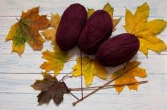 Skeins, yellow leaves, knitting needles on white vintage wooden. Skeins of yarn, yellow leaves, knitting needles on white vintage wooden desk. Top view. Marsala stock photo