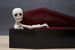 Skelet in de doodskist Stock Afbeelding
