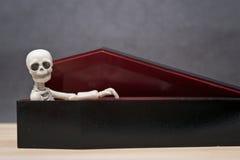 Skelet in de doodskist Royalty-vrije Stock Foto