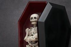 Skelet in de doodskist Royalty-vrije Stock Fotografie