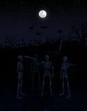 Skelet e abóbora Fotografia de Stock