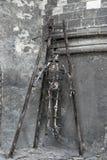 Skelet in kerker royalty-vrije stock foto