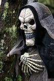Skelet met een kap Stock Afbeelding