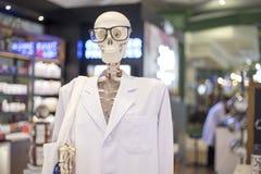 Skelet of Schedelhoofd die oogglazen en wit wetenschappelijk l dragen Royalty-vrije Stock Foto's