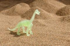 Skelet van een dinosaurus op zand royalty-vrije stock fotografie