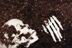Skelet in vuil royalty-vrije stock afbeeldingen