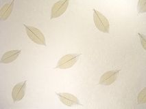 Skeletal Leaves Pattern 2. Skeletal Leaves on a rough hand made cotton paper royalty free stock images