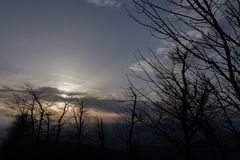 Skeletal trees silhouettes in winter, against a warm colored sky at sunset.  stock photo