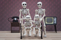Skeletfamilie Stock Afbeelding