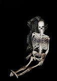 Skeleton Royalty Free Stock Photos
