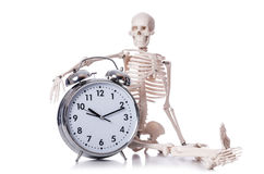 Skeleton with alarm clock royalty free stock photos