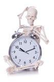 Skeleton with alarm clock on the white Stock Photo