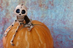 SKELETON BIG HEAD SITTING ON A PUMPKIN. Amusing skeleton with big skull sitting on a pumpkin on Halloween Stock Images