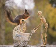 Skeleton bird and red squirrel on a stroller Royalty Free Stock Photo