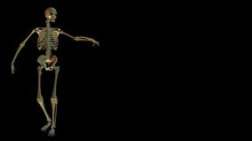 Skeleton on black with copyspace Stock Photo