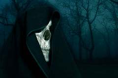 Skeleton in a black hood. Royalty Free Stock Images