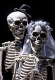 Skeleton bride and groom Royalty Free Stock Photo