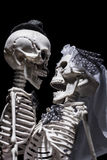 Skeleton bride and groom Stock Image