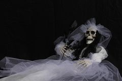 A skeleton bride in a white dress. Stock Photo