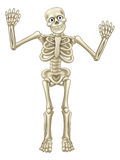 Skeleton Cartoon Waving Hands Royalty Free Stock Images