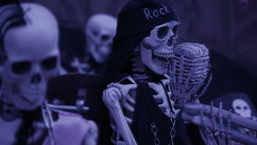 Skeleton chained. the concept of ghosts. halloween skull closeup. Skeleton chained. the concept of ghosts. halloween stock video footage