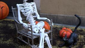 Skeleton in chair next to pumpkin and black cat during halloween celebration. A skeleton sits in a chair next to a pumpkin and a black cat. Skeleton mannequin stock video footage