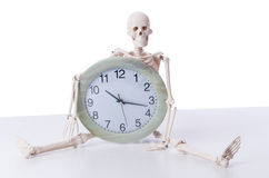 The skeleton with clock isolated on white. Skeleton with clock isolated on white royalty free stock photography