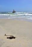 Skeleton coast, Namibia. Shipwreck on the skeleton coast, Namibia stock images