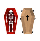 Skeleton in coffin. Open casket and skull and bones. Dead man in Stock Image