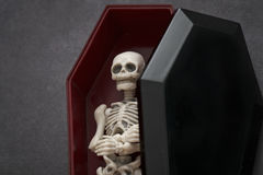 Skeleton in the coffin Royalty Free Stock Photography