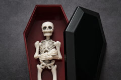 Skeleton in the coffin Royalty Free Stock Photos