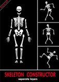Skeleton constructor. Vector Royalty Free Stock Photos