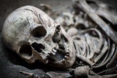 Skeleton Dead Body Head Royalty Free Stock Photo
