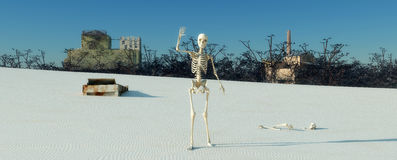 Skeleton in the desert Royalty Free Stock Photos