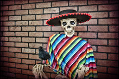 Skeleton Eastwood. Latino skeleton sitting against a brick wall having a smoke with his trusty pet crow stock image
