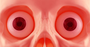 Skeleton Eyes Stock Images
