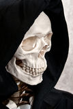 Skeleton face in hood Stock Image