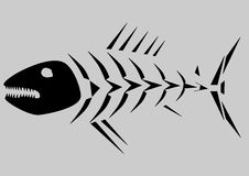 Skeleton of fish Stock Photo