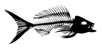 Skeleton of fish. Royalty Free Stock Photos