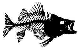 Skeleton of fish. Stock Image