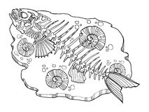 Skeleton of fish coloring book vector illustration. Lace pattern Royalty Free Stock Photos