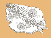 Skeleton of fish fashion vector illustration. Lace pattern Royalty Free Stock Photo